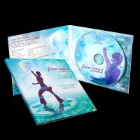 flowtoys - flow-wand fundamentals DVD
